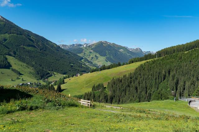 Waldwandern in Saalbach | Wanderung zu den Waldteichen am Maisereck | Saalbach - Maisalm - Wirtsalm - Waldteiche - Spielberghaus - Saalbach | Wandern-SalzburgerLand 06