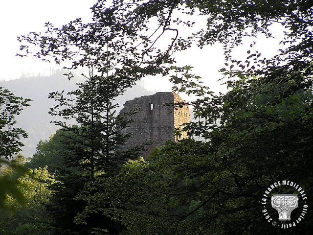 OBERHASLACH (67) - Château du Nideck
