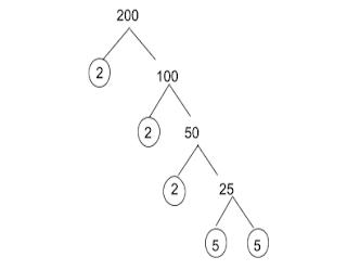 factor tree 200