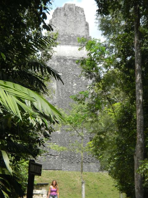 TIKAL マヤ文明 遺跡
