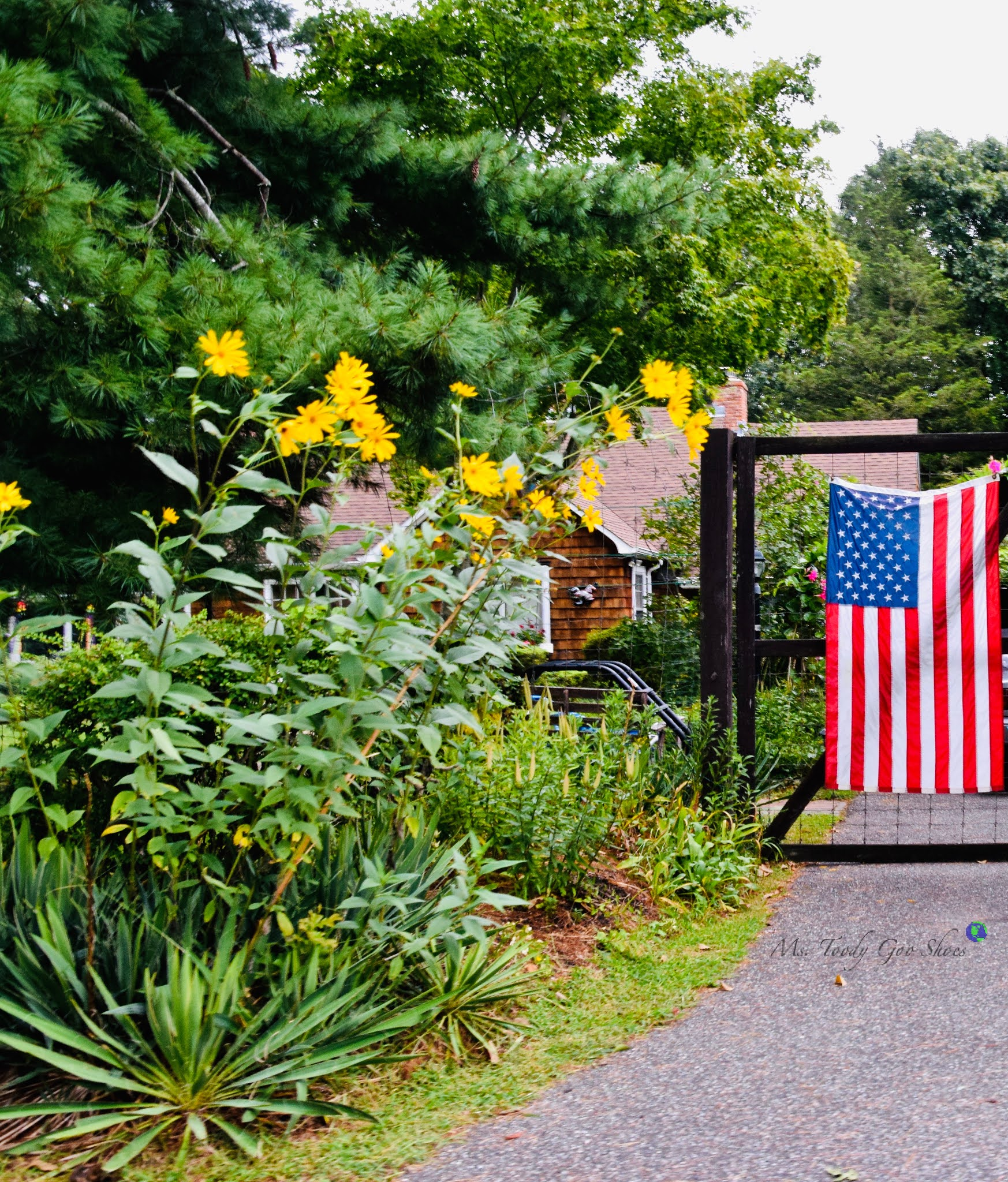 American Flags, Shelter Island, NY | Ms. Toody Goo Shoes