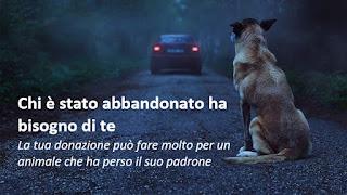 30 milioni di amici contro l'abbandono dei cani - Video