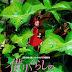 La Bogeria del Cine | Arrietty y el mundo de los diminutos