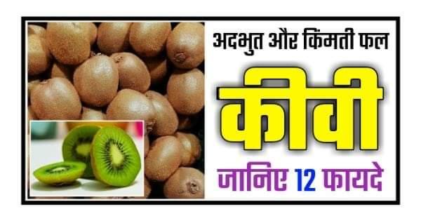 Health benefits kiwi hindi - kiwi fruit ke fayde kya hai 1
