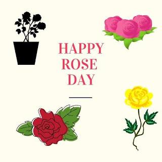 Happy Rose Photo