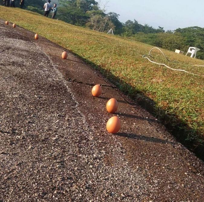 Telur Berdiri Gerhana Matahari 2016