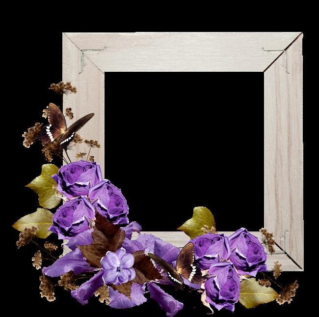 Purple Rose Frame ForgetMeNot: purple ro...