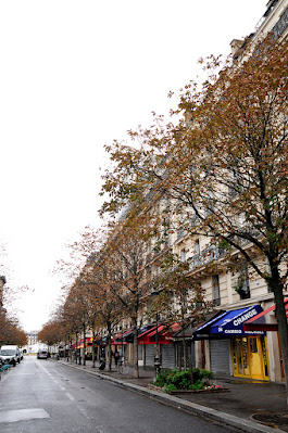 Roadside trees with Autumn leaves & low rise apartment in Paris