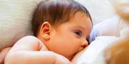 menyapih bayi