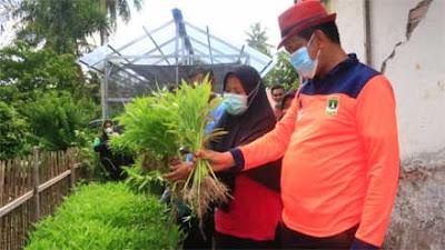 Wako Pariaman Ajak Kaum Ibu-Ibu Manfaatkan Pekarangan Tanam Tumbuhan Produktif