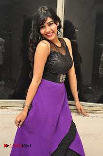 Telugu Actress Rachana Smith Stills at Money is Honey Audio Release  0029.jpg