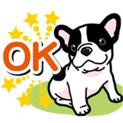 Wanko-Biyori Puppy of French Bulldog
