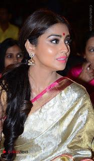 Actress Shriya Saran New Images in Silk Saree at Gautamiputra Satakarni Audio Launch  0016.jpg