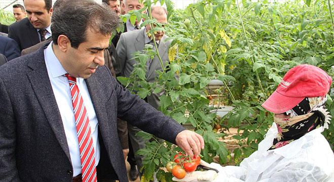 Diyarbakır Valisi Bismil'de sera üreticileri ile bir araya geldi