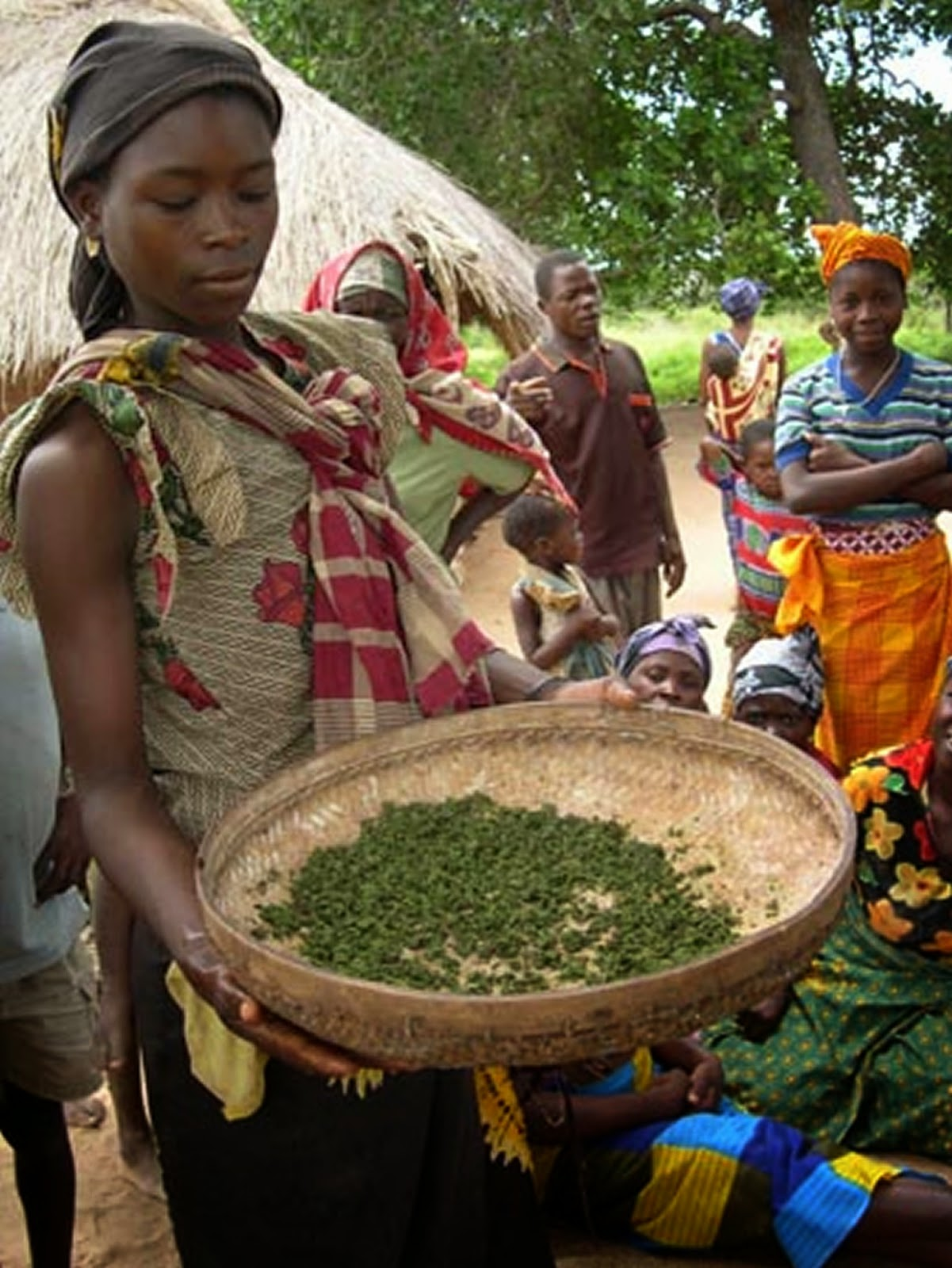 African Women farmers planting seed