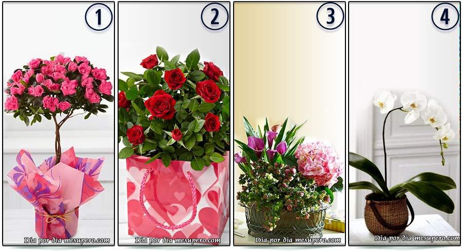 🌷 Test: Elige una flor y descubre cuál es tu lenguaje de amor