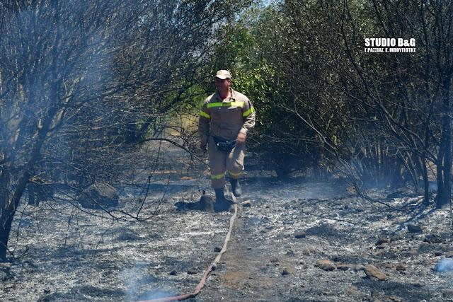 Επικίνδυνη η πυρκαγιά στην Αγία Τριάδα - Ενισχύσεις από Ναύπλιο και Άργος