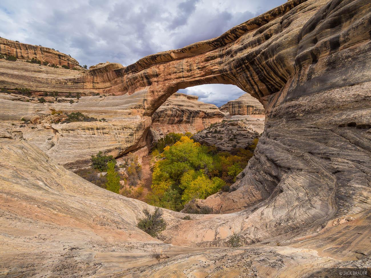"""Национальный памятник """"Природные мосты"""" в штате Юта, США"""