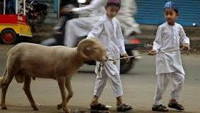 Jelang  Idul Adha, Ini Panduan Salat Ied  dan Menyembelih Hewan Qurban di Tengah Covid-19