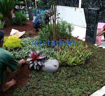 Tukang Taman Murah Tangerang