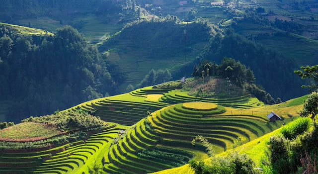 Northwest of September & the paradise of terraced fields
