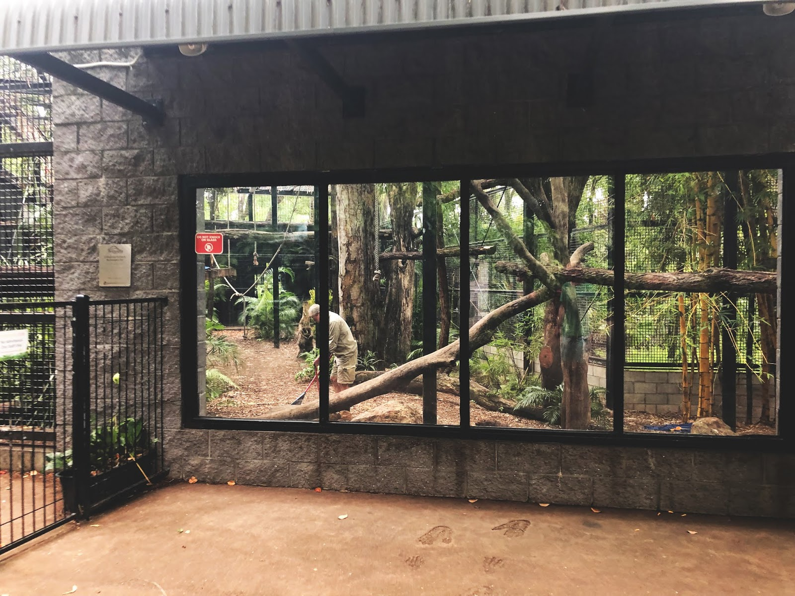 Human in Rockhamton Zoo