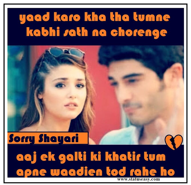 Sorry Shayari in Hindi For Love Image