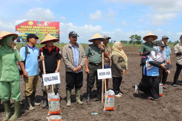 Kampung Teladas, Tulang Bawang, Laksanakan Penanaman Padi Perdana, Tahun Anggaran 2019