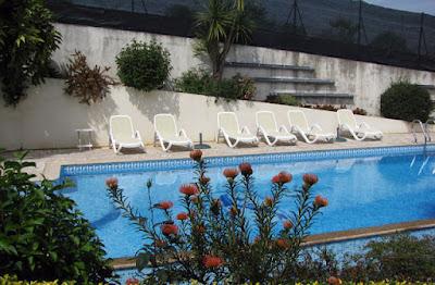 flores e piscina