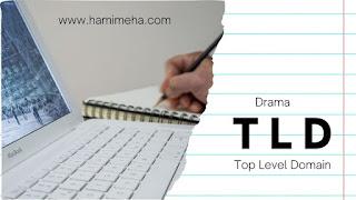 Blogger wajib bisa pasang TLD sendiri