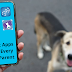 9 Best Apps For Every Pet Parent || Grooming Pets