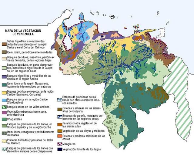 Mapa de la Vegetación en Venezuela