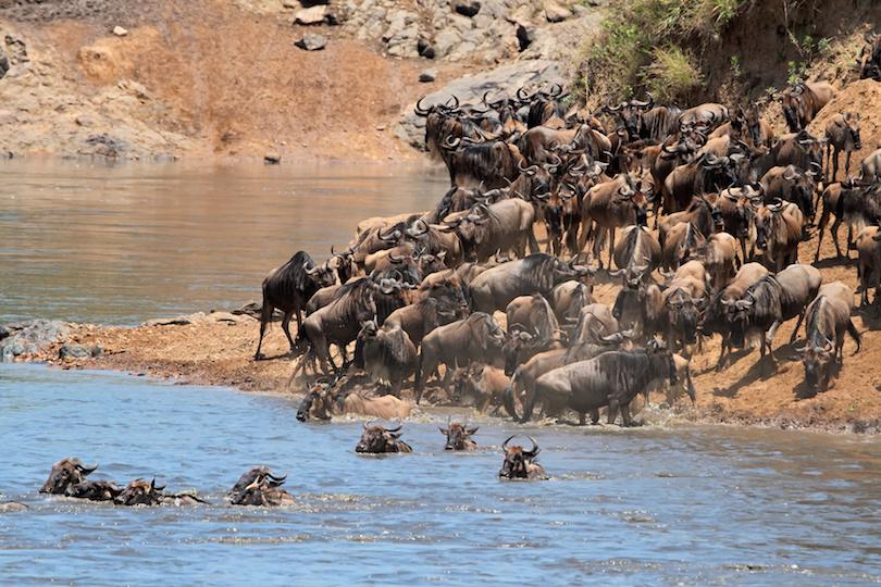 اجمل المناطق السياحية في كينيا