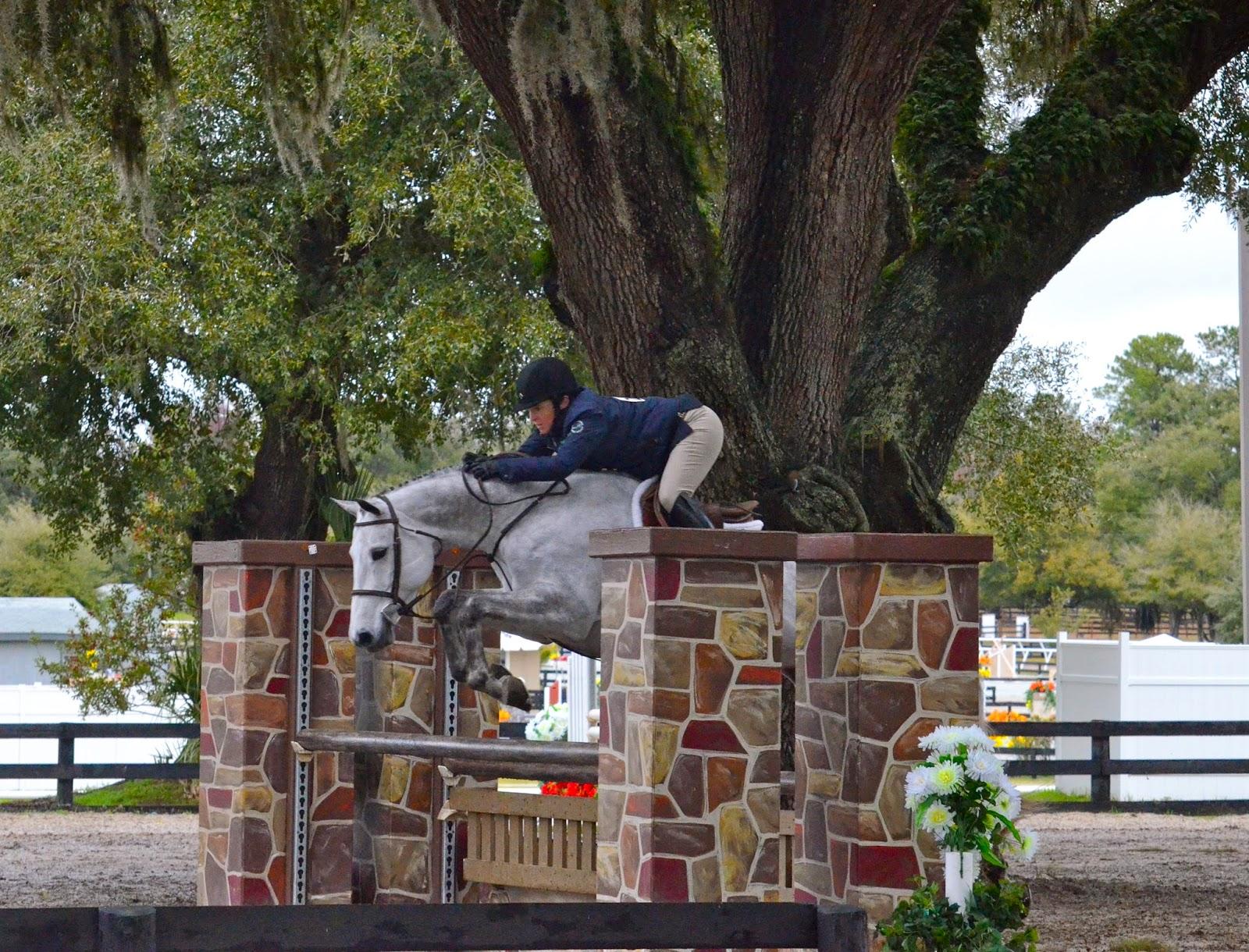 Rolling Acres Farm Hunter Jumper Horse Boarding Sales