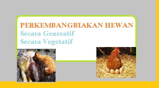 650 Koleksi Gambar Perkembangbiakan Hewan Secara Generatif Dan Vegetatif Terbaru