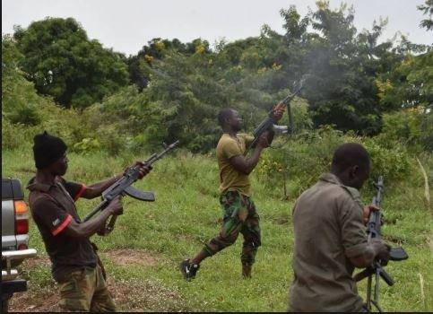 Bandits kill 13, raze 56 houses in Kaduna