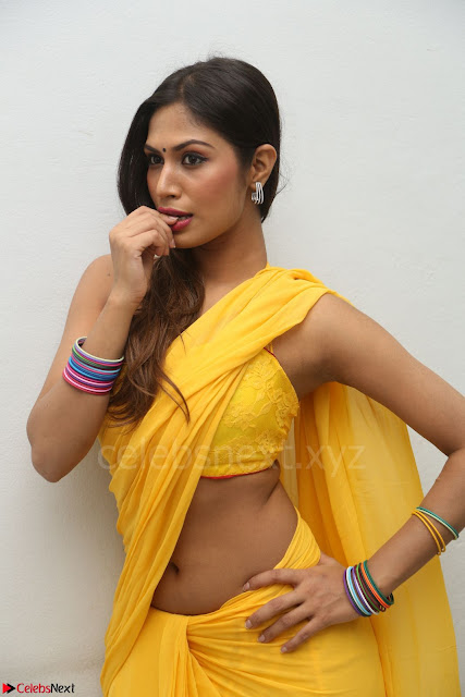 Nishigandha in Yellow backless Strapless Choli and Half Saree Spicy Pics 001.JPG