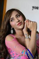 Actress Angela Krislinzki in Pink Saree Blouse Exclusive Pics March 2017 ~  007.JPG