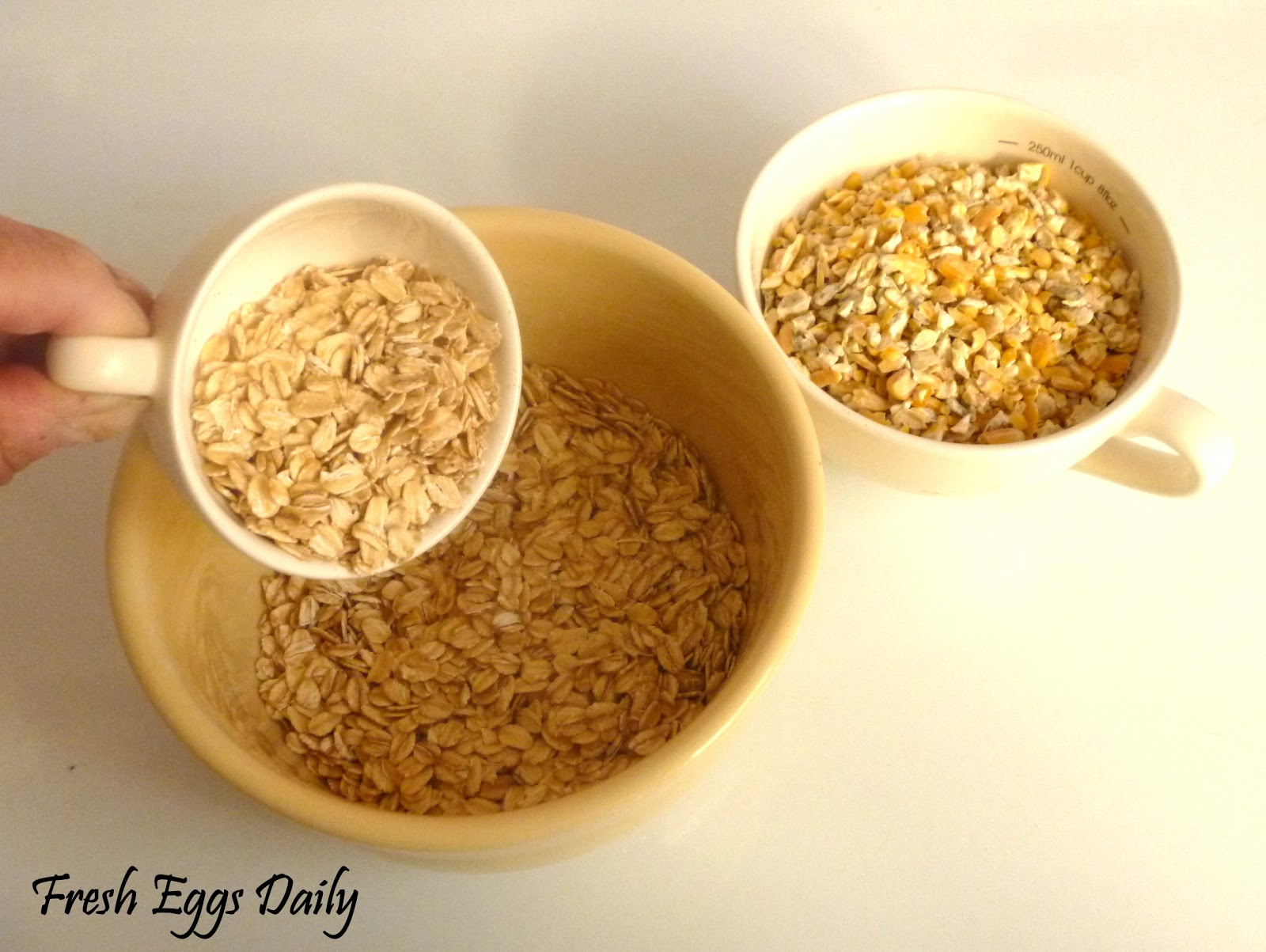 Mixing your Own Chicken Layer Feed | Fresh Eggs Daily®