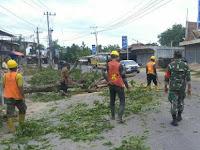 Babinsa 20/Pante Bidari Bantu Warga Singkirkan Pohon Tumbang