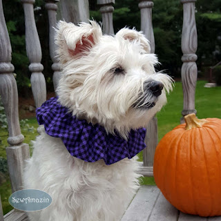Halloween Checkered Plaid Dog Scrunchie Ruffle, Purple