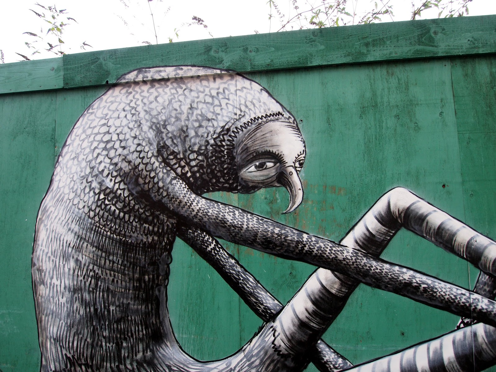 phlegm New animal in town