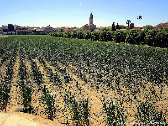 Bonrepós i Mirambell (Valencia).