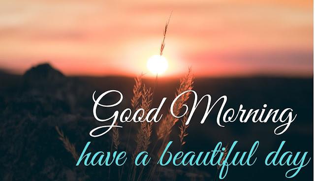 Good Morning have a beautiful day Good Morning sun image