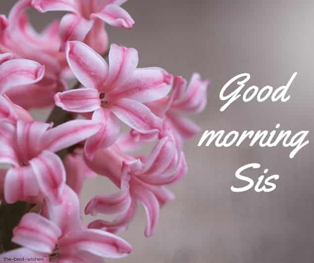 good morning sis image