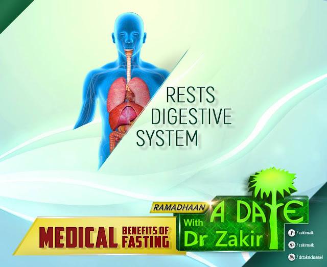 RESTS DIGESTIVE SYSTEM   RAMADAN 2020 by Ummat-e-Nabi.com