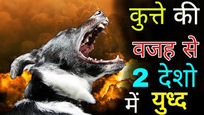 कुत्ते की वजह से दो देशो में हुआ युध्द // Odd and Weird Facts In Hindi