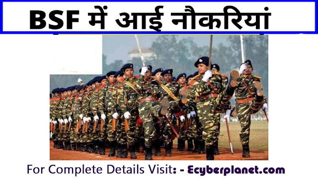 BSF Group B and C Vacancies