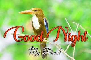 Latest Beautiful Good Night Wallpaper Free Download %2B95