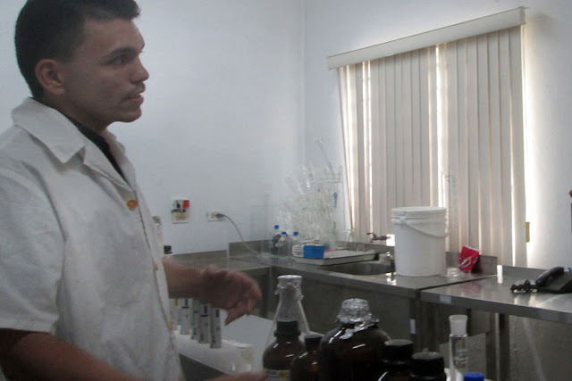 apicultura cubana